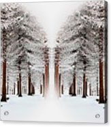 The Calm Of Winter In The Woods Acrylic Print