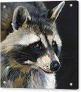 The Cat Food Bandit Acrylic Print