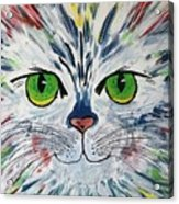 The Cat Got In My Paint Acrylic Print
