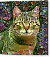 The Cat Who Loved Flowers 1 Acrylic Print