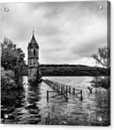 The Cathedral Of Fish Bw Acrylic Print
