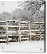 The Cattle Pens Acrylic Print