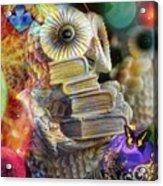 The Christmas Owl  Acrylic Print