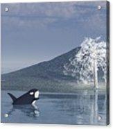The Christmas Whale Acrylic Print