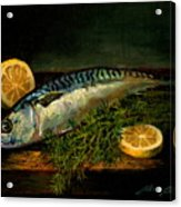 The Cold Water Mackerel With Dill  Lemon. Acrylic Print