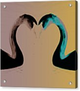 The Color Of Love Acrylic Print