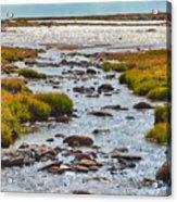The Colorado Tundra Acrylic Print