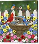 The Colors Of Spring - Bird Fountain In Flower Garden Acrylic Print by Crista Forest