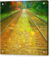 The Colour Along The Tracks Acrylic Print