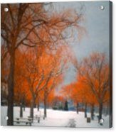 The Colours Of Winter Acrylic Print