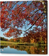 The Comfort Of Autumn Acrylic Print