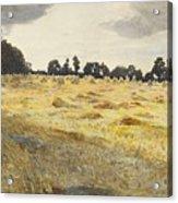 The Cornfield  Acrylic Print