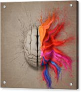 The Creative Brain Acrylic Print