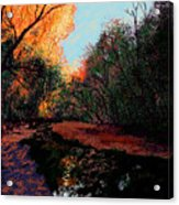 The Creek Bottom Acrylic Print