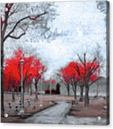The Crimson Trees Acrylic Print