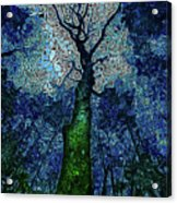 The Deep Wood Acrylic Print