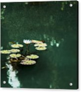 The Depths Of Lily Acrylic Print