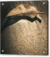 The Desert Burial Acrylic Print