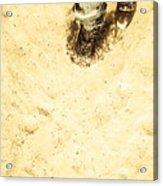 The Desert Wanderer Acrylic Print