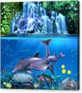 The Dolphin Family Acrylic Print
