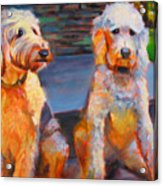 The Doodle Sisters Acrylic Print