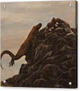 The Dragon And The Ox Acrylic Print