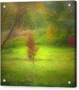 The Dream Field Acrylic Print