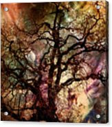 The Dream Oak Triptych Center Panel Acrylic Print