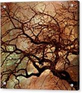 The Dream Oak Triptych Left Panel Acrylic Print