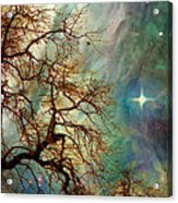 The Dream Oak Triptych Right Panel Acrylic Print