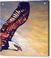 The Eagle Or The Great Thunderbird Spirit In The Sky Acrylic Print