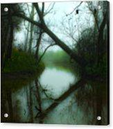 If A Tree Falls Acrylic Print