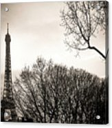 The Eiffel Tower In Backlighting. Paris. France. Europe. Acrylic Print