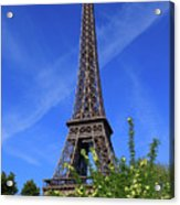 The Eiffel Tower In Spring Acrylic Print