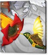 The Electric Hummingbird Acrylic Print