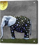 The Elephant And The Moon Acrylic Print