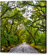 The Emerald Forrest Acrylic Print