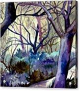 The Enchanted Path Acrylic Print
