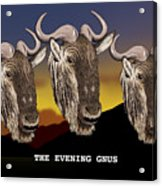 The Evening Gnus Acrylic Print