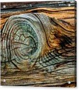 The Eye In The Wood Acrylic Print