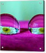 The Eye Of The Petal II Acrylic Print