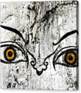 The Eyes Of Guru Rimpoche  Acrylic Print by Fabrizio Troiani