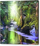 The Fairy Glen Gorge River Conwy Acrylic Print
