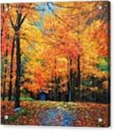 The Fall At Best Acrylic Print