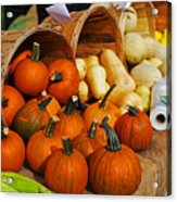 The Fall Harvest Is In Kendall Square Farmers Market Acrylic Print