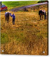 The Farmers Friend Acrylic Print