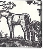 The Farrier Trims Geronimo Acrylic Print