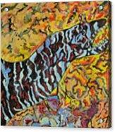 The Fierce Eel Acrylic Print