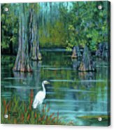 The Fisherman Acrylic Print by Dianne Parks