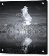 The Florida Everglades Acrylic Print